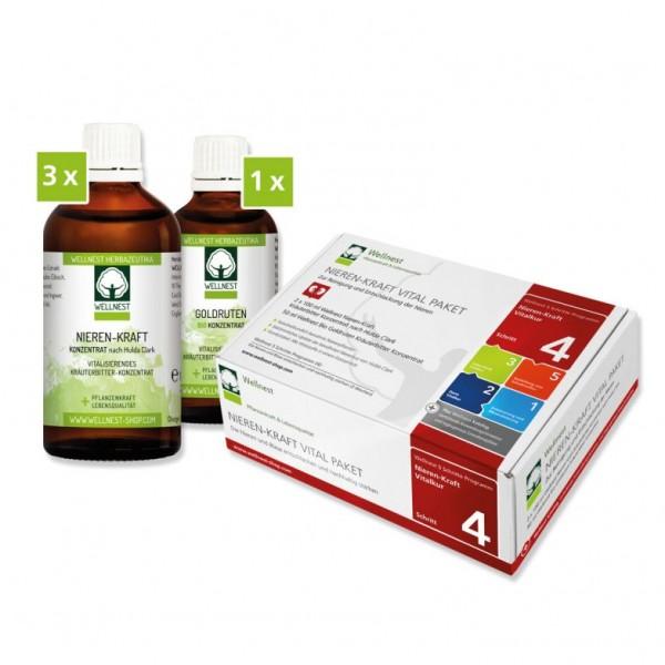 Wellnest Nieren-Kraft Vitalkur Paket (30 Tage)